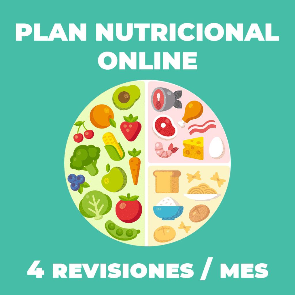 Plan Nutricional online