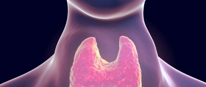 Nutricionate Hipertiroidismo